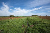 Watercourse running through farmland<br /> &copy;Tim Scrivener Photographer 07850 303986<br /> ....Covering Agriculture In The UK....