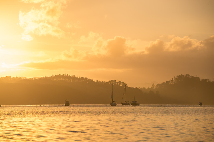 Boats on the water at dawn in the Pahia Harbour, New Zealand - stock photo, canvas, fine art print