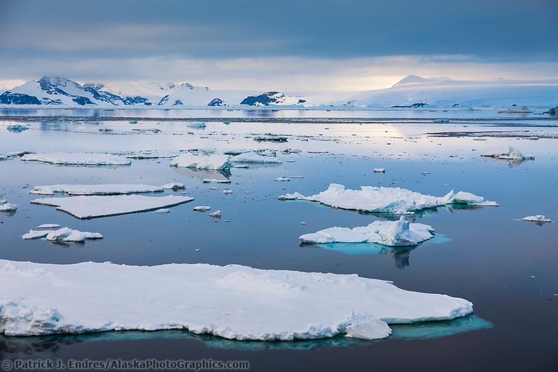 Sea ice near Paulet Island, Antarctic peninsula.