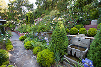 Path and retaining walls in backyard garden with small trough fountain; Scales home