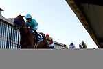 May 2, 2020: Charlatan (1) with jockey Martin Garcia aboard crossing the finish line in the 1st division of the Arkansas Derby at Oaklawn Racing Casino Resort in Hot Springs, Arkansas on May 2, 2020. Justin Manning/Eclipse Sportswire/CSM