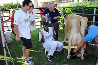 Pitchers Jhan Carlos Marinez (47) and Jason Berken (19) of the Triple-A Charlotte Knights participate in a cow-milking contest prior to a game on June 15, 2013, at Knights Stadium in Fort Mill, South Carolina. The event was a part of SE Dairy Night at the ballpark. (Tom Priddy/Four Seam Images)