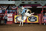 Taylor Russell on 30 of DK during first round of the Fort Worth Stockyards Pro Rodeo event in Fort Worth, TX - 8.2.2019 Photo by Christopher Thompson
