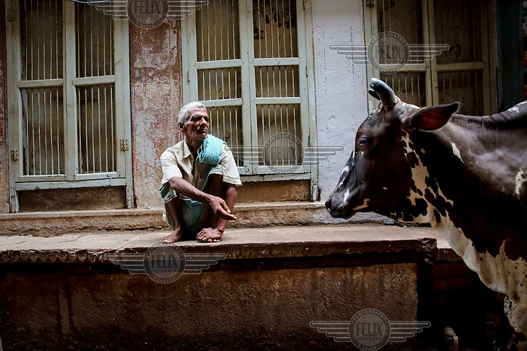 A man gestures to a cow as it wanders through the one of the city's many alleyways.