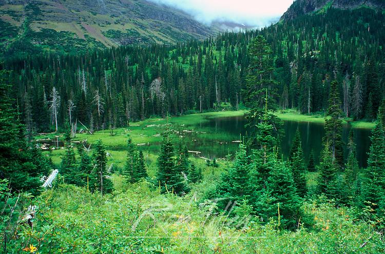 Upper Two Medicine Lake, Glacier NP, MT, USA