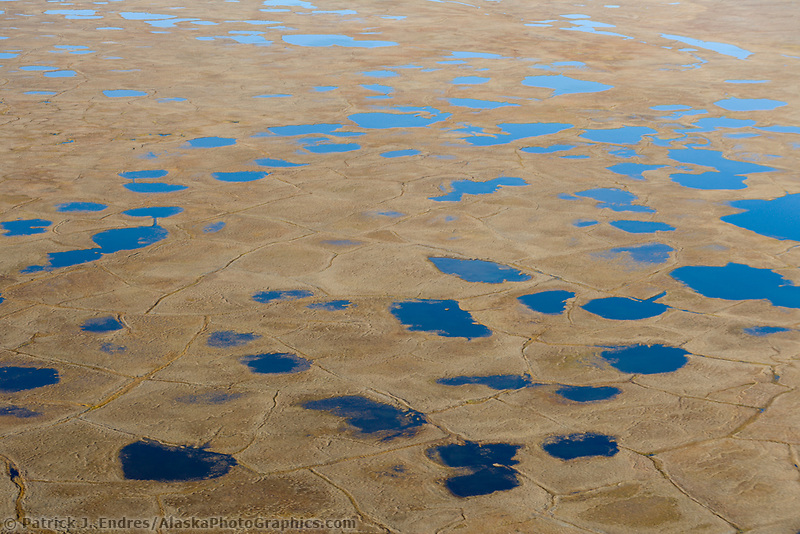 Geological feature of Polygons and kettle ponds on the Arctic coastal plain of the Arctic National Wildlife Refuge, Alaska.