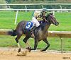 Callingmissbrown winning at Delaware Park on 10/1/16