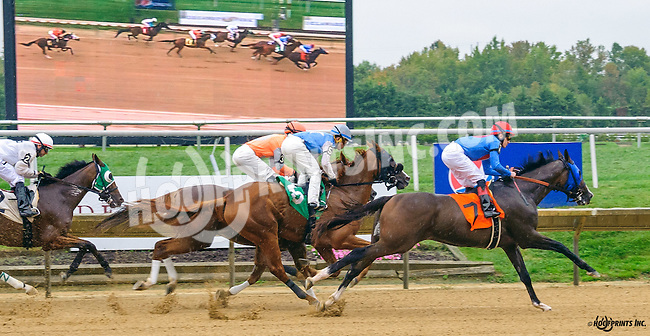 Uncle Woodrow winning at Delaware Park on 10/8/16