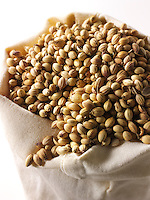 Whole coriander Seeds - stock photos