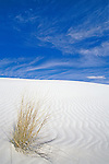 White Sands NM, New Mexico, USA