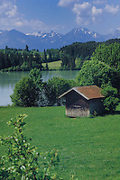 Wooden hut close to lake forgensee with the alps in the background. Lake Forgensee, Füssen, Bavaria, Germany.
