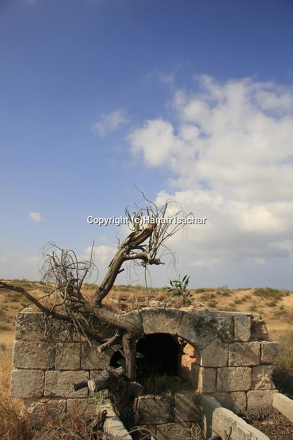 Israel, Southern Coastal Plain, ruins of an oven at Al Nabi Rubin