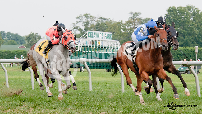 Gallivanting winning at Delaware Park on 8/26/2013