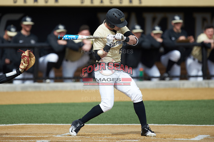 Jake Mueller (6) of the Wake Forest Demon Deacons is hit by a picth on his right forearm during the game against the Louisville Cardinals at David F. Couch Ballpark on March 18, 2018 in  Winston-Salem, North Carolina.  The Demon Deacons defeated the Cardinals 6-3.  (Brian Westerholt/Four Seam Images)