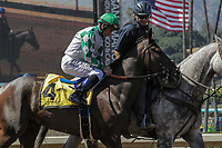 ARCADIA, CA. JUNE 17:  #4 Sircat Sally ridden by Mike Smith in the post parade of the Honeymoon Stakes (Grade ll) on June 17, 2017 at Santa Anita Park in Arcadia, CA (Photo by Casey Phillips/Eclipse Sportswire/Getty Images)