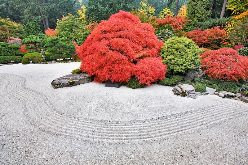 Rock garden with fall color. Portland Japanese Gardens. Oregon