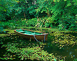 County Cork, Ireland  <br /> Wood row boat on the mill pond of Creagh Gardens at Skibberdeen
