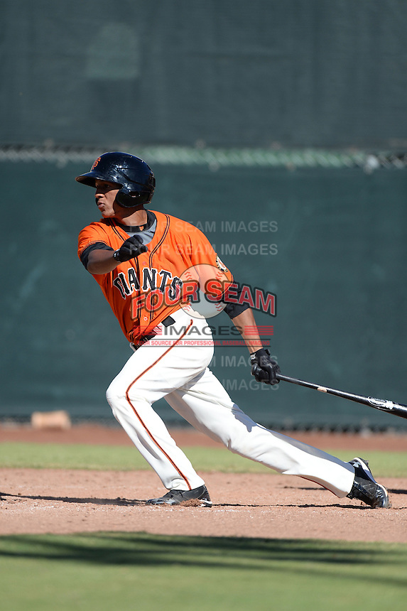 San Francisco Giants outfielder Johneshwy Fargas (9) during an instructional league game against the Arizona Diamondbacks on October 3, 2013 at Giants Baseball Complex in Scottsdale, Arizona.  (Mike Janes/Four Seam Images)