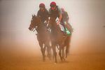 03-29-19 Dubai World Cup Trackwork Meydan