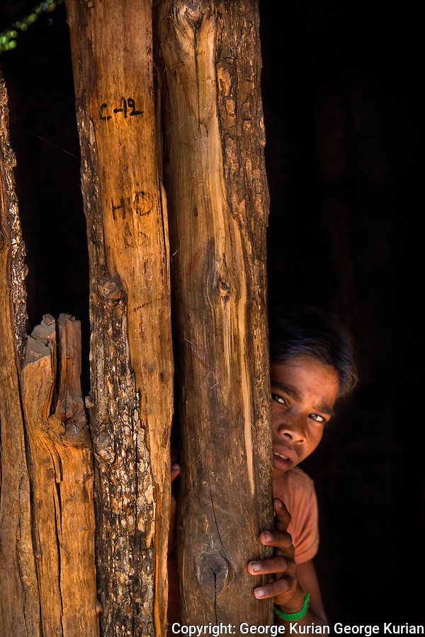 Villagers say that forest officials take their tools and grain away and burn down houses, to get the tribals to leave.
