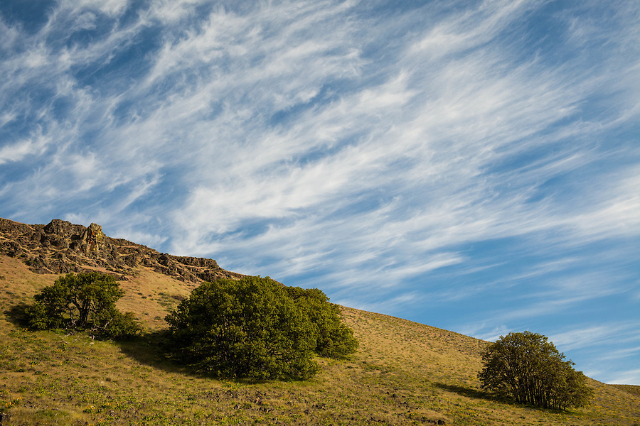 Wispy tendrils of cirrus clouds dominate the sky above a rocky, tree-covered hillside in Oregon.