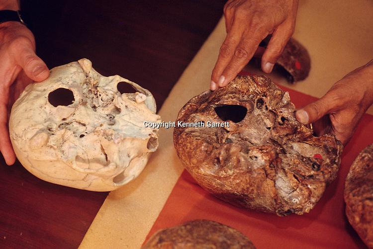 DOH; Homo Erectus; Ngangdong skulls; Indonesia