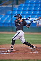 Missoula Osprey Axel Andueza (14) at bat during a Pioneer League game against the Great Falls Voyagers at Centene Stadium at Legion Park on August 19, 2019 in Great Falls, Montana. Missoula defeated Great Falls 1-0 in the second game of a doubleheader. (Zachary Lucy/Four Seam Images)