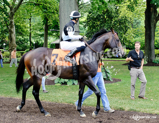 Craftsman before The Nick Shuk Memorial Stakes at Delaware Park racetrack on 7/10/14