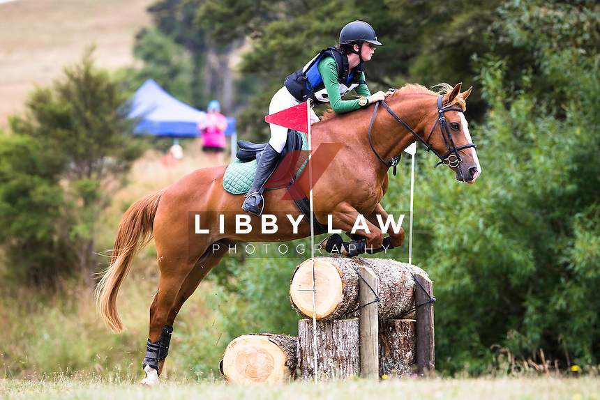 NZL-Niamh Walsh (MURPHY MCGEE) 2A NZPC 95: 2015 NZL-Hunua Pony Club ODE (Sunday 1 February) CREDIT: Libby Law COPYRIGHT: LIBBY LAW PHOTOGRAPHY