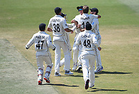 25th November 2019; Mt Maunganui, New Zealand;  NZ players celebrate Mitchell Santners catch International test match day 5 of 1st test, New Zealand versus England;  at Bay Oval, Mt Maunganui, New Zealand.