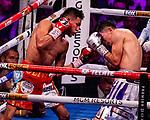 NOV 23 2019 Las Vegas Nevada: Leo Santa Cruz,  (Purple Silver trunks) 129.5lbs Michoacan, MEX  vs Miguel Flores, Red Gold trunks)  130lbs Michoacan, MEX  WBA World Super Lightweight Championship 12 round on FOX/PBC :  photo