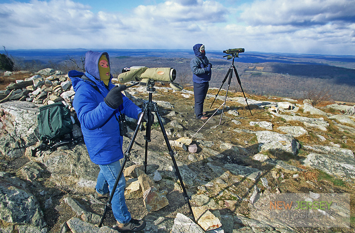 Birdwatchers, fall migration.  Racoon Ridge, Kittatinny Mountains, New Jersey