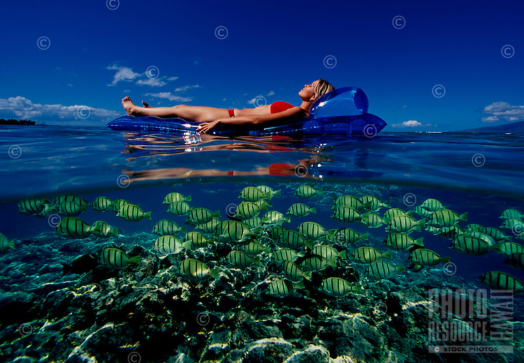 Girl floats on a mat while a school of Yellow Tang fish swim underneath on Maui.