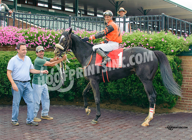 Aragvi winning at Delaware Park on 9/30/15