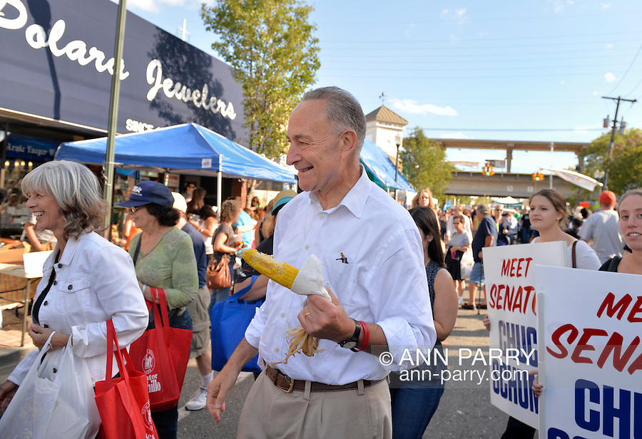 """Bellmore, New York, U.S. 22nd September 2013. U.S. Senator CHARLES """"CHUCK"""" SCHUMER  (Democrat), running for re-election in November, eats corn on the cob during a campaign stop to the 27th Annual Bellmore Family Street Festival, featuring family fun with exhibits and attractions in a 25 square block area, with over 120,000 people expected to attend over the weekend."""