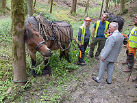 01 July 2019 - Wales, UK - Prince Charles Visits Ty'n-y-Coed Forest, coed Forest. Photo Credit: ALPR/AdMedia
