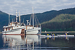 Alaska, Southeast Alaska, Passenger vessels, M/V Catalyst and the M/V Westward, sea kayakers with mothership, Stephens Passage, These small ship cruises are by Pacific Catalyst II Inc.