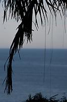 Ubatuba, localizado no litoral norte do estado de São Paulo.<br /> Parque Estadual da Serra do Mar.