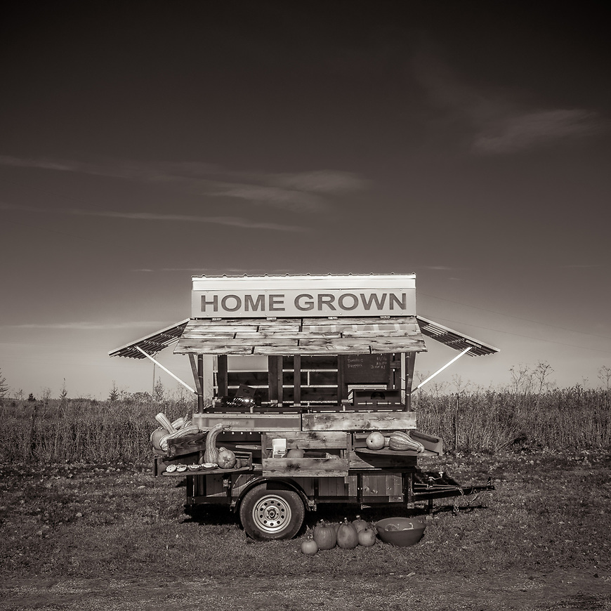 HOME GROWN -- A food cart in a farm field near Reedsburg, Wisconsin, USA.  #michaelknapstein #midwestmemoir #blackandwhite #B&W #monochrome #motherfstop #wisconsin  #bwphotography #myfeatureshoot  #fineartphotography #americanmidwest #squaremag #lensculture #mifa #moscowfotoawards #moscowinternationalfotoawards #rps #royalphotographicsociety #CriticalMass #CriticalMassTop200 #photolucida  #portfolioshowcase11 #thegalaawards #thepolluxawards #flakphoto #ipe160 #ipe161 #grainedephotographe  #galleryofwisconsinart
