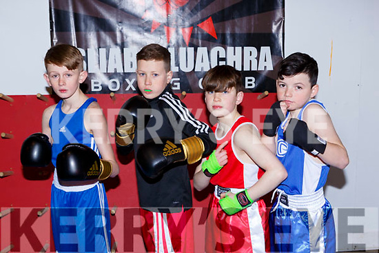James Casey Tralee BC, Mikey Burke Tralee BC, Richard O'Brien Listowel and Bradley O'Brien Trojan BC at the County Boxing Championships in Castleisland on Sunday