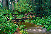 Bridge over Prairie Creek<br />