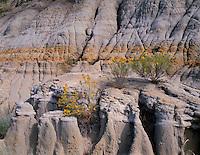 NDTR_130 - USA, North Dakota, Theodore Roosevelt National Park, Hard sandstone caprocks lie above softer clay sediments displaying rill erosion, Caprock-Coulee Area, North Unit.