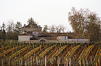 A view over the vineyard and chateau of Chateau Figeac in Saint Emilion in winter time when there are no leaves on the vines, St Émilion Gironde France Saint Émilion Bordeaux Gironde Aquitaine France Europe