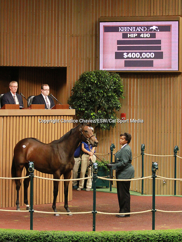 September 10, 2014: Hip #490 Distorted Humor - Bon Jovi Girl filly consigned by Denali Stud, sold for $400,000 at the Keeneland September Yearling Sale.   Candice Chavez/ESW/CSM