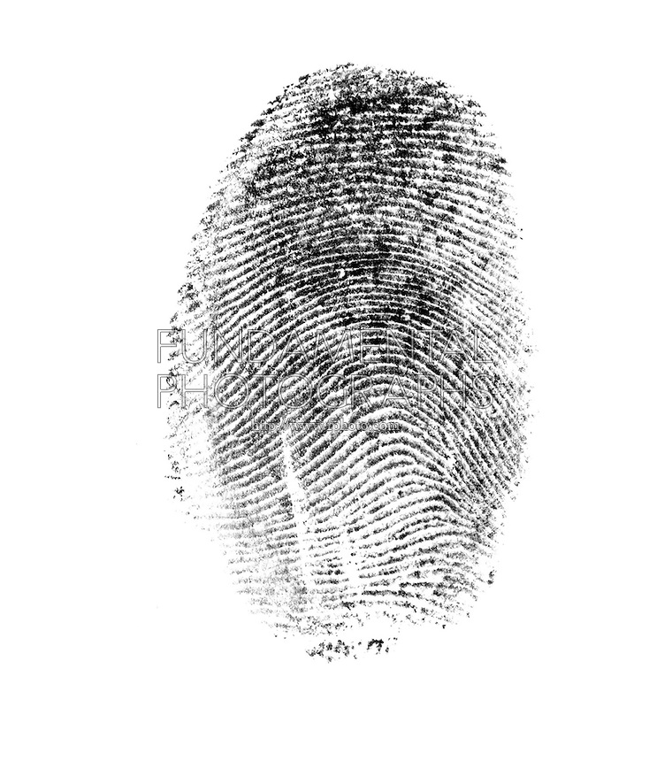 FINGERPRINT<br /> Arches<br /> A fingerprint is an imprint made by the pattern of ridges on the pad of a human finger. No two humans have ever been found to have identical fingerprints. The five most commonly used are: whorl, right loop, left loop, arch and tented arch.