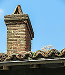 "VMI Vincentian Heritage Tour: Flowers growing on the roof of a home in the small village of Pérouges  - Tuesday, June 28, 2016, site of the classic film ""Monsieur Vincent"". (DePaul University/Jamie Moncrief)"