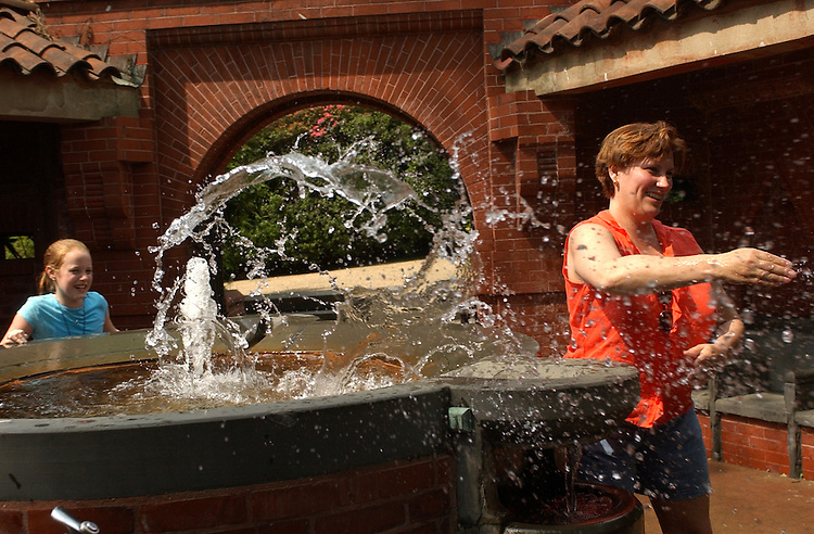 fountain3/052802 - After a long day of visiting Washington, Katie Wade, 11, of Vienna, and her aunt, Judy Wade Stoermer, of Dayton, Ohio, gang up Stoemer's son Michael, during a water fight in the Grotto on the West Front of the Capitol.