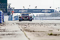 Action, #24 BMW, John Edwards,  Jens Klingmann, Lucas Lühr  12 Hours of Sebring, Sebring International Raceway, Sebring, FL, March 2015.  (Photo by Brian Cleary/ www.bcpix.com )