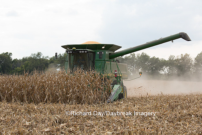 63801-07011 Farmer harvesting corn, Marion Co., IL