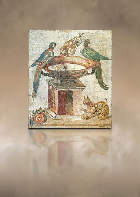 Roman mosaic of drinking birds from Santa Maria Capua Vetere, ancient Capua, inv no 9992, Naples Archaeological Musum, Italy